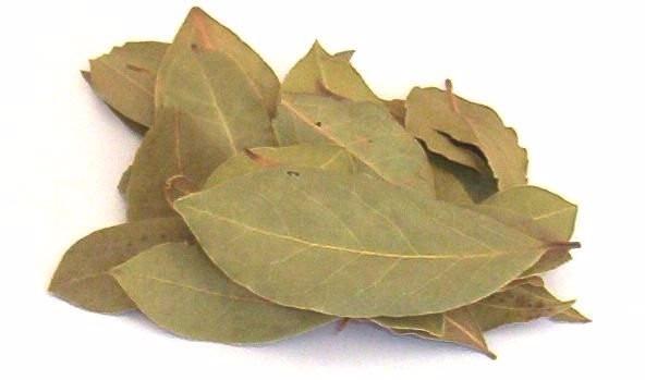 folha-de-louro-importado-turquia-1-kg-D_NQ_NP_702405-MLB25014756400_082016-F